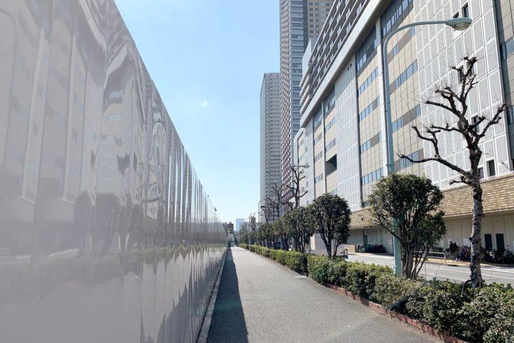 東京国際大学の新キャンパスは池袋のどこに建設予定? 現地に行って詳細を調べてみた