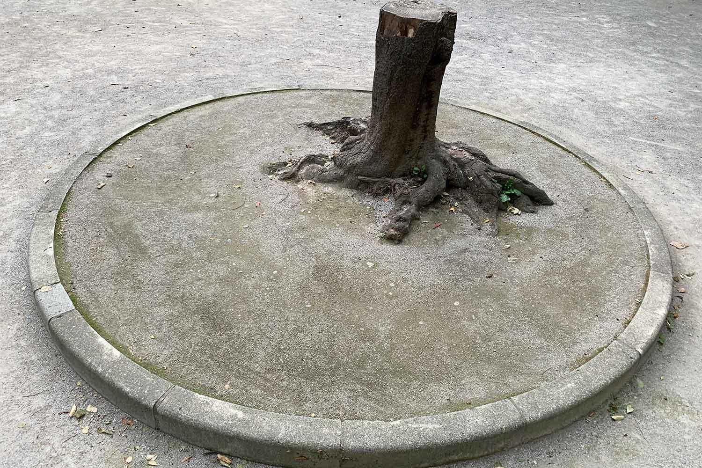 豊島区立 日出町公園