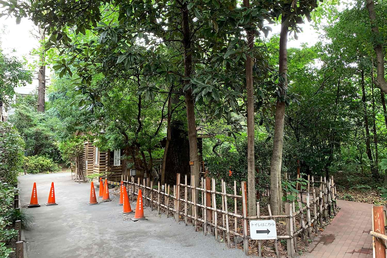 豊島区立 池袋の森