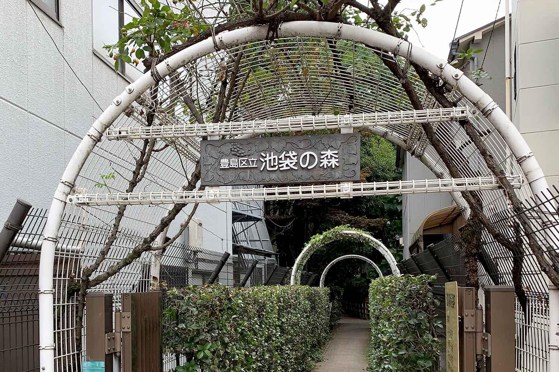 豊島区立『池袋の森』へ行ってみたら「綺麗な自然」が撮影できました