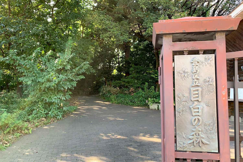 目白の森へ行ってみた! 景色や行き方を写真つきで紹介!