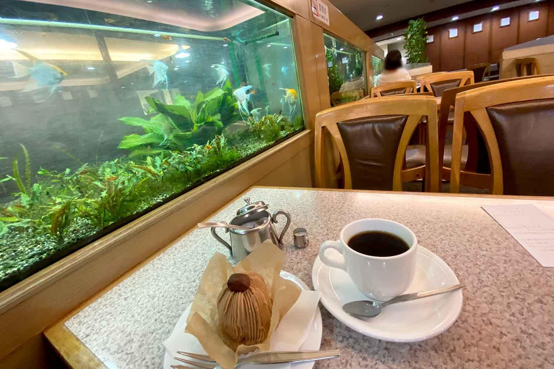 池袋西口の喫茶店フラミンゴの水槽