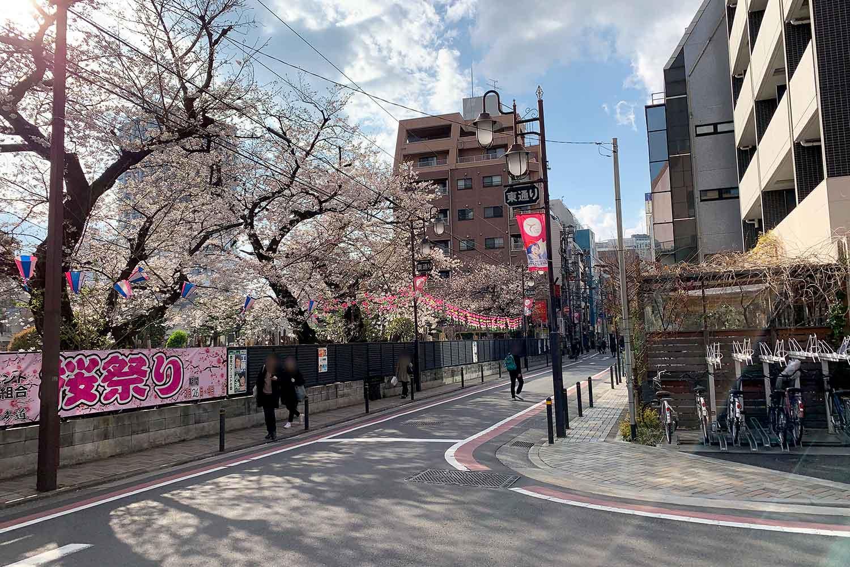 池袋で桜を花見! 東通りはぜひ歩きたい場所